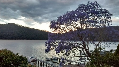 Dangar Island Evening | by Andrew.263