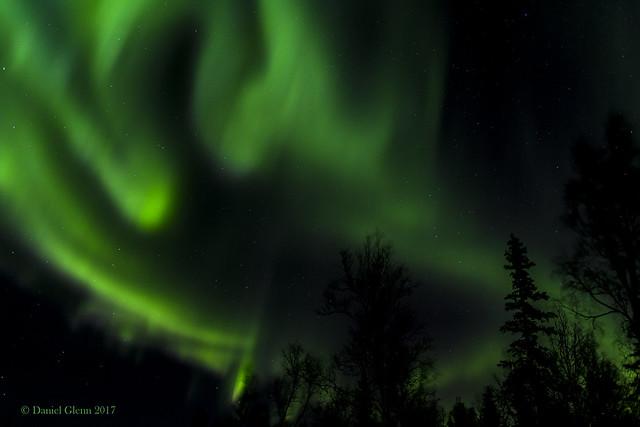 Ghost of Aurora's past...