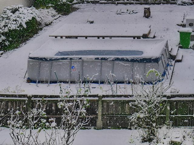 Pool in the Snow Blick aus dem Küchenfenster in den Hinterhof Gärten Schwimmbecken der Wäscherei verpackt eingeschneit Verbotsschild Stiegen Baumstumpf Rosen Zaun Holzbretter blau grün rot weiß am Morgen 8 Uhr 40 min 28 sec