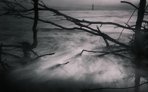 canon charleston follybeach southcarolina atmosphere blackandwhite driftwood fog forlorn landscape light lighthouse mist monochrome nature seascape shore tones water waves mood