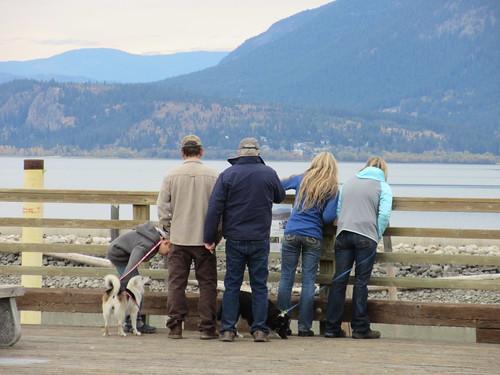 people dog pier salmon arm shuswap lake bc british columbia canada