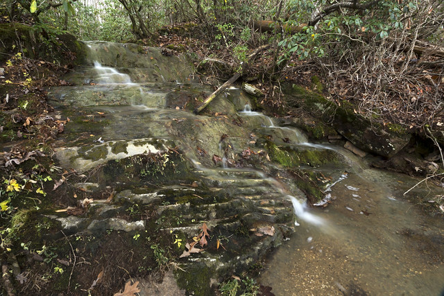 Unnamed waterfall, Clifty Area, Caney Fork River, Cumberland County, Tennessee