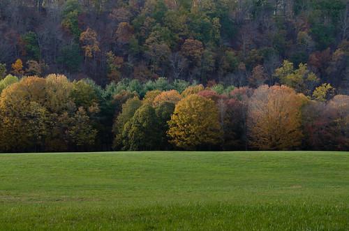 autumn autumncolors autumninbuckscounty tinicumpark erwinna erwinnapa buckscounty buckscountypa tinicumcountypark riverroad delawarecanal delawareriver tinicumcounty