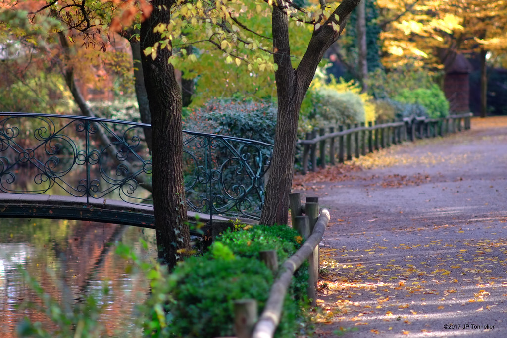 Automne au jardin des plantes, Toulouse | jardin des plantes ...