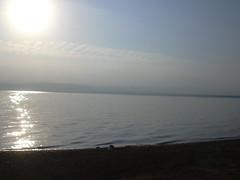 Totes Meer, Am Strand des Dead Sea Spa Hotel (400 m unter M.)