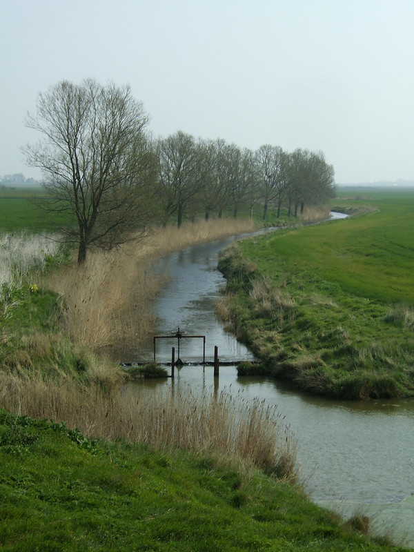 Marshes near Burnham-on-Crouch