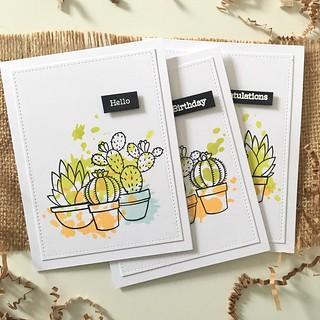 Cactus splatter cards | by Kimberly Toney