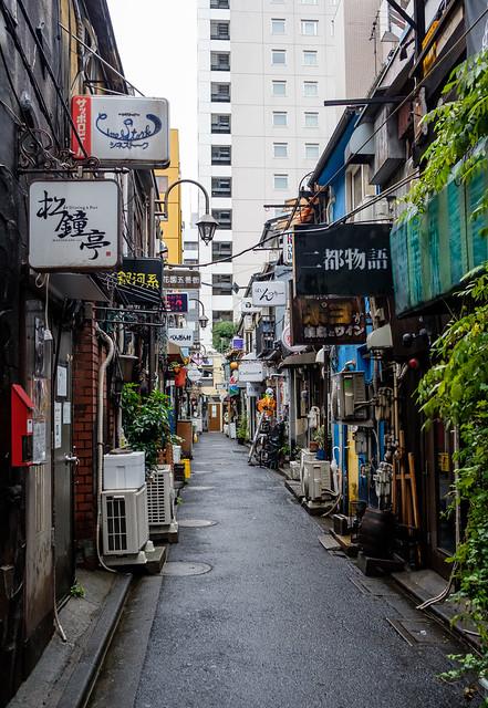 Shinjuku Golden Gai and Piss Alley-1