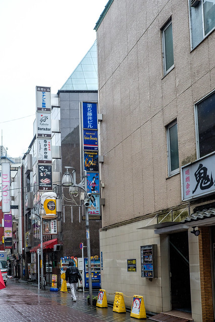 Akihabara, Ueno and Ameyoko Market-3