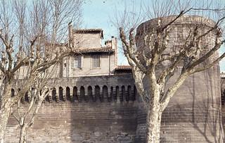 Avignon city wall and planes. Rhone site