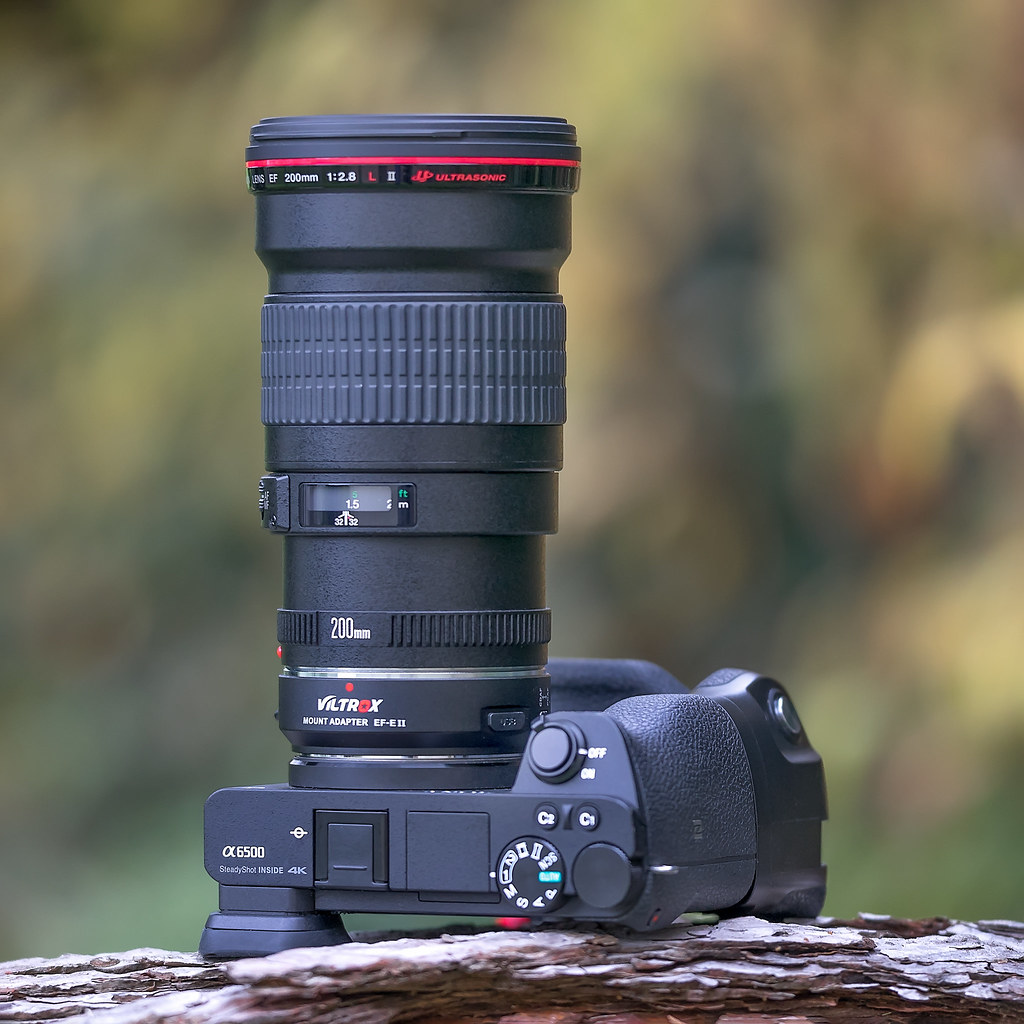 213mm ƒ/2! Canon EF200mm ƒ/2 8L II USM with Viltrox EF-E I