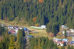 木々に囲まれた名入集落を走る列車(後述のビューポイントから撮影)