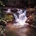Van Campen Glen Falls (reprocess)