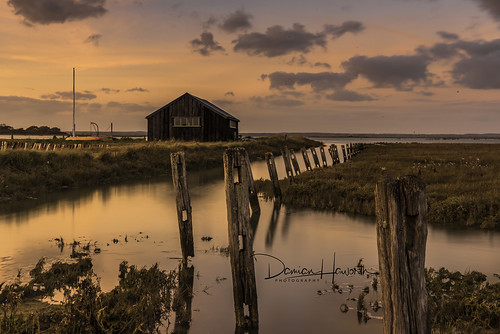 Newtown Sunset W_DSC5876-HDR   by hov1s@