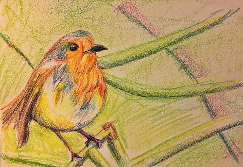 drawing crayon bird
