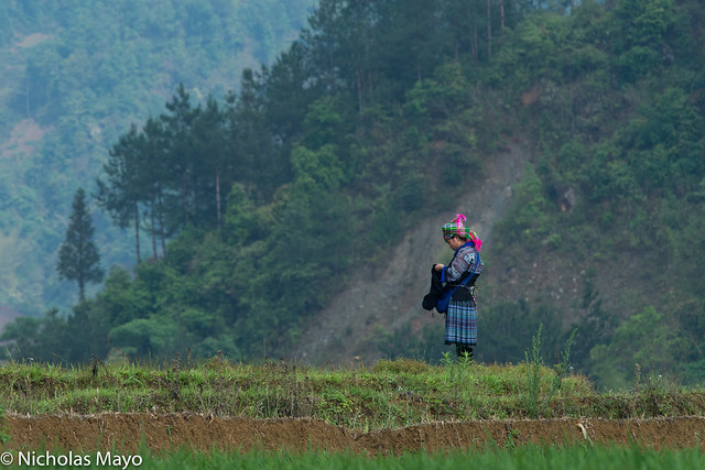 Blue Hmong Girl Sewing