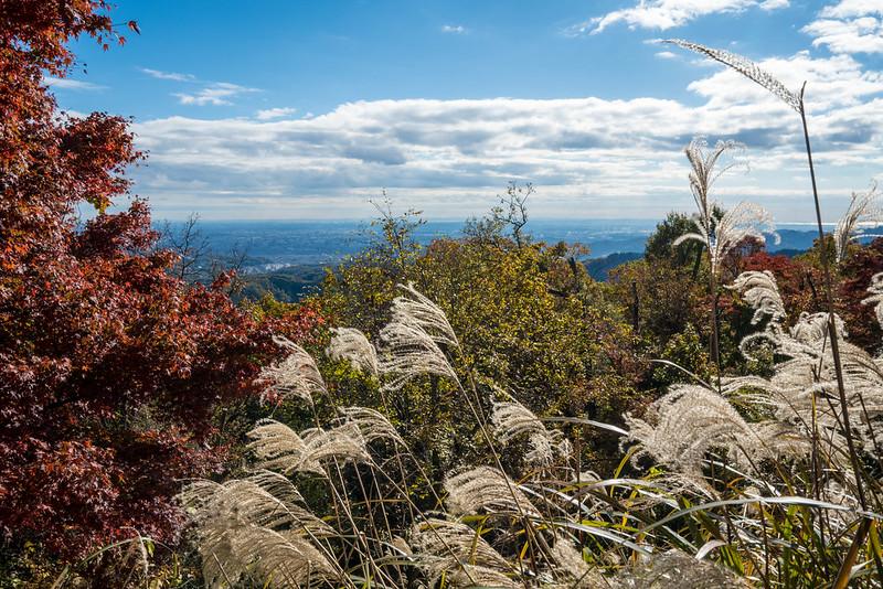 高尾山の紅葉登山