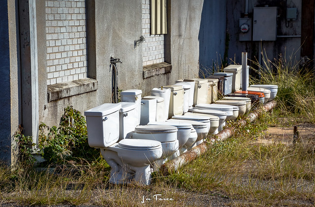 ~Community of Commodes~