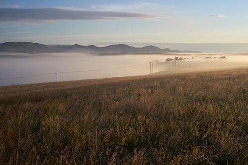 uk morning summer mist west grass sunrise canon landscape scotland early scenery view none sony hill farmland fields a7 borders linton schottland pentlands fd ecosse midlothian scottis peeblesshire broomlee