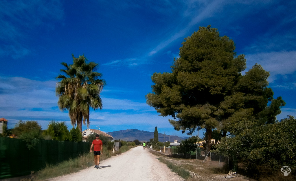 En las proximidades de Molina de Segura