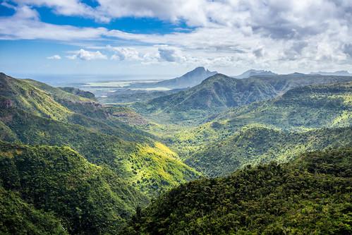 mauritius insel island berge mountains berg mountain bäume baum trees tree jungle urwald wald forest aussicht view landschaft landscape sony a77 natur nature outdoor
