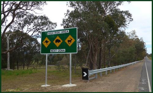 victoria australia swanpooltoeildon roadside warning sign