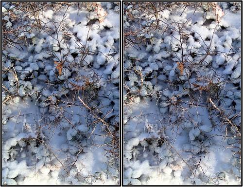 bushes crosseye ice stereo tremblant wintergreen
