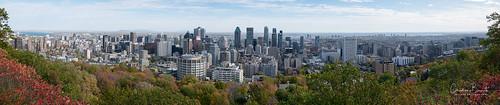 montreal panorama downtown mountroyal montroyal fall autumn color