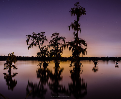 breauxbridge louisiana unitedstates us cypress bayou swamp tree bluehour silhouette reflection sunset purple orange glow backlight pentax2470mm pentaxk1 pixelshift landscape lake skymatthewsphotography
