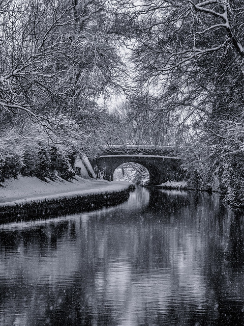 Wintry Canal