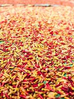 Cloves drying | by Sander Solvak
