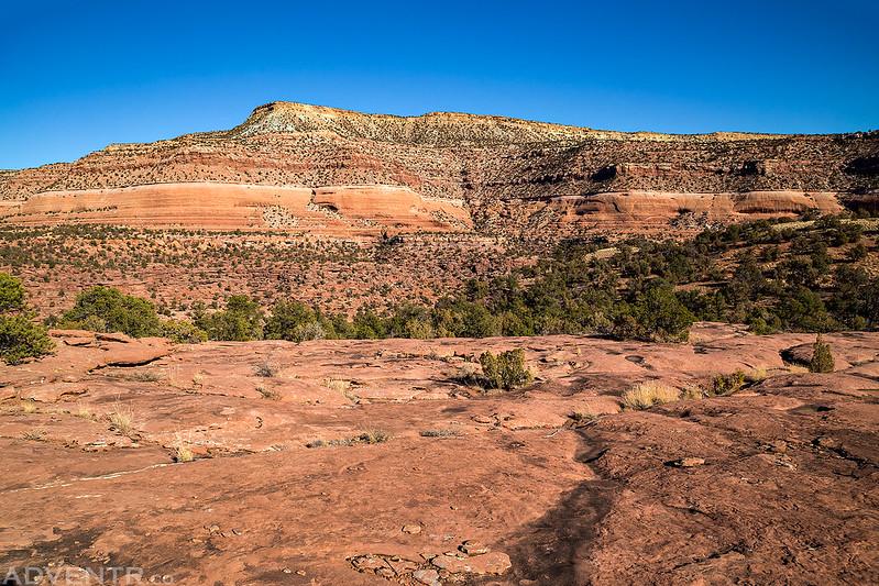 Blue Mesa View