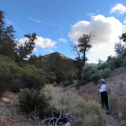 303 Oakzanita Peak in the afternoon sun as we hike down the Oak Trail   by _JFR_