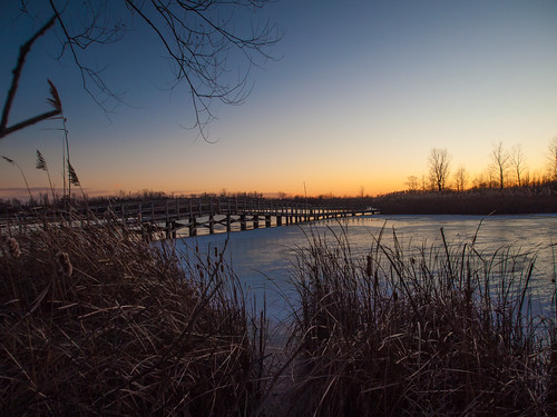 crosswinds marsh michigan scenic sunset winter ice cold water nature olympus ep2 zuiko 1250