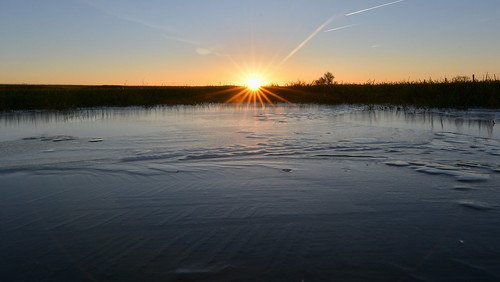 frost frozen sunrise leverdesoleil sun sky ciel soleil horizon flaque eau glace nikond5200 tokinaaf1120mmf28 uk england cleevehill cleevecommon landscape paysage aurore nikon wideangle