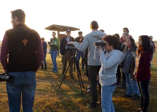 smgaphotobylancejones sanmarcosgreenbeltalliance birdinghike grasslands