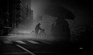 bicycle night in the rain | by claudiadea131