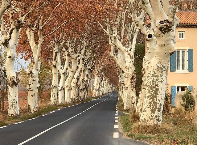 Route du Midi