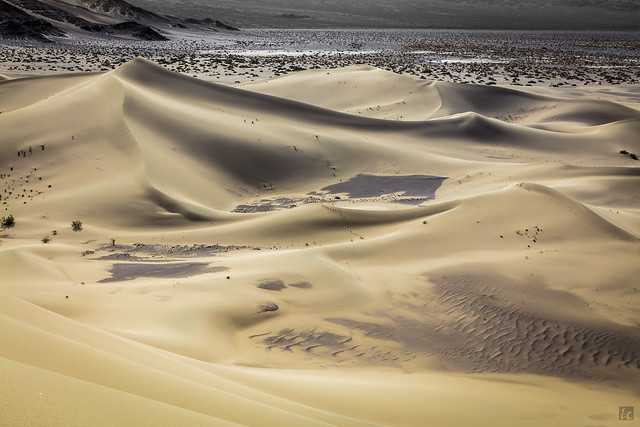 Ibex Dunes - View from the Top
