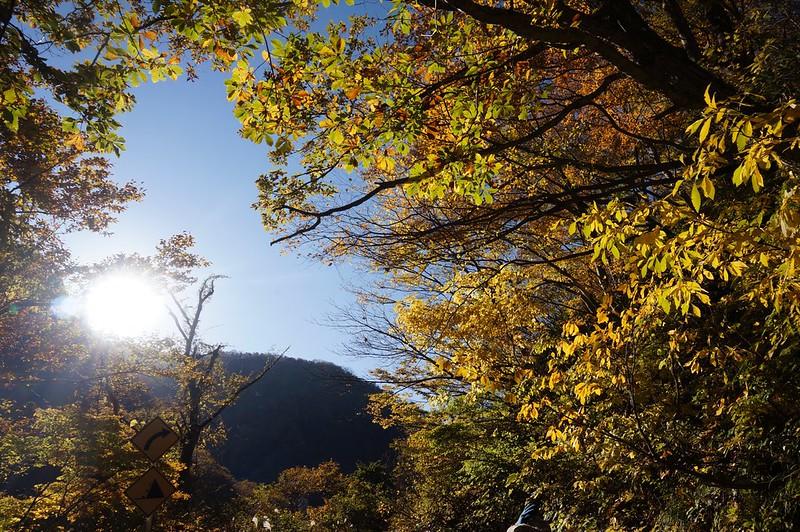 "Road of The ""ENSHOUNOMICHI"""