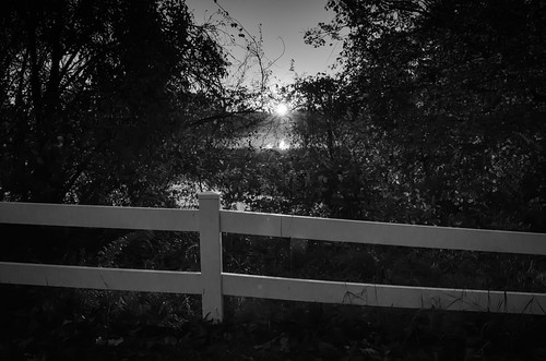 noiretblanc blackandwhite bw mist misty mistywaters autumnmorning morning tihonetroad wankincoriver wareham warehamriver warehamma warehammassachusetts harlowbrook pondsofplymouthcounty parkersmillpond firstlight sunrise dawn