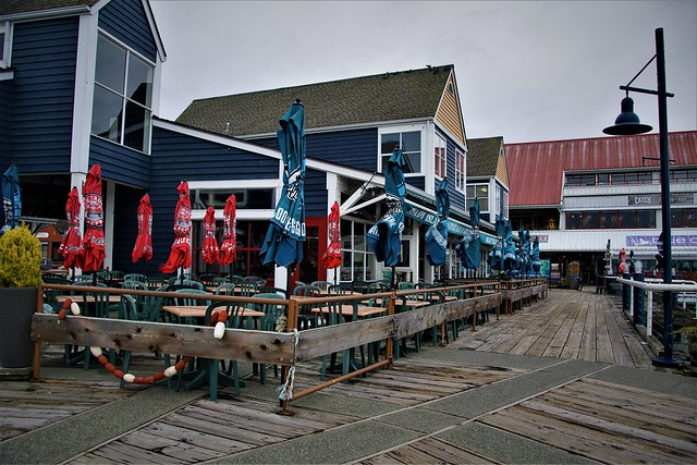 Boardwalk at Steveston - DSC00298-2