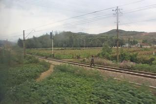 Branch line in Yomju   by Timon91