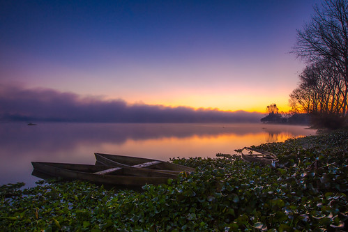 lake pateiradefermentelos sky blue boat flowers fog nature orange portugal purple sunrise tree water autumn plants jacintos lagoon lagoa