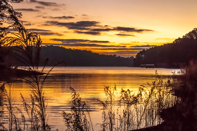 Lake Lanier Sunrise (0589)