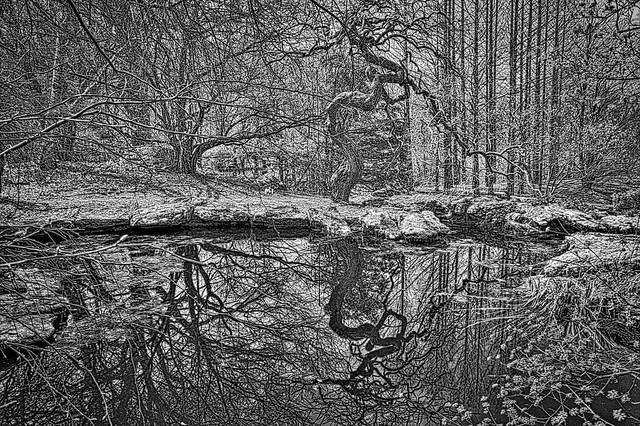 Stonecrop Pond