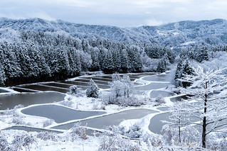 大地の雪景色 | by hiroching