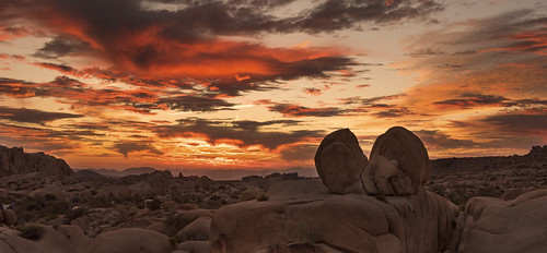 Sunrise at Heartbreak Rock | by Joshua Tree National Park