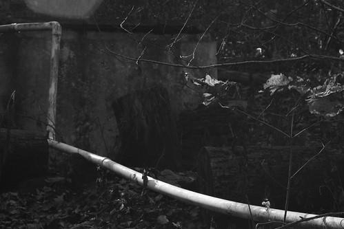 spring mountainspring reservoir pipe intothelight blackmountain northcarolina nikond3300 mamiyasekor80mmf28 mamiyaprime primelens blackandwhite monochrome monochromatic landscape