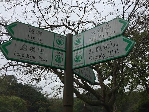 Wilson Trail 8   by avbertrand1